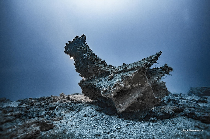 il-rostro-egadi-12-sul-fondale-a-86-metri-di-profondita¦c-photo-derk-remmers_402c635e